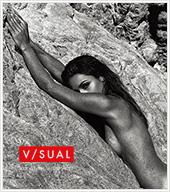 V/SUAL by Van Styles(ヴィジュアル・バイ・ヴァンスタイル)